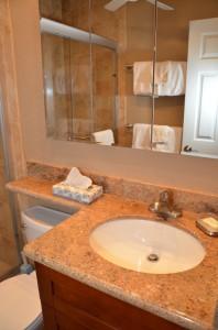 DSC_4201_bathroom2_1BR